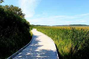 memorial service ideas boardwalk trail