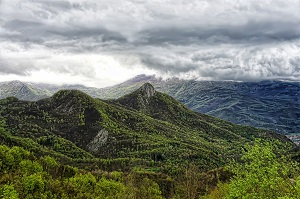 organ domain mountains and forest photo